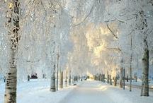 Snow / by Janet VanBuskirk
