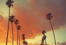 Traveling / by Sara Tee