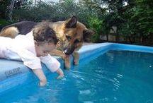 Dogs & kiddies