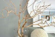 Galhos secos. (decorating with branches) / DIY decoração com galhos secos, cria um ar rústico e de natureza na sua decoração.