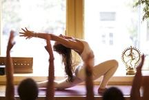 Yoga / by elizabeth merritt