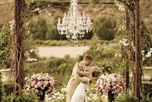 Wedding  / by Caitlin Roncari