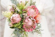 flower: protea / wedding flowers inspired by protea and exotics