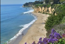 California, USA / Napa Valley, Redwood Forests, Best Beaches, Deserts, Oceans, a beautiful state.