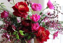 colour: lush colour / inspiration featuring wedding flowers with rich lush colours