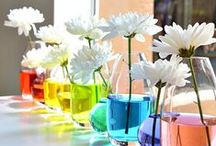 Rainbow Party / Rainbow themed party and gift inspiration.