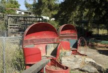 Abandoned Theme Parks / Yesteryear Fun / by Ann McCroskey Browning