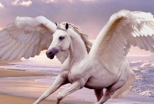 Creature ☠ Pegasus