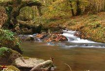 Rincones de Cantabria y aledaños / Aquí encontrará fotografías hechas con pasión de rincones especiales de los lugares de Cantabria  y poblaciones limítrofes que me han inspirado