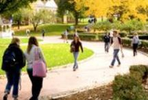 C4K Alumni Colleges