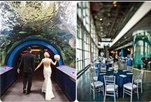 Creative Wedding Venues