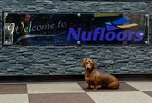 OUR STORE / Welcome to Nufloors Vernon.  We look forward to being of service to you!