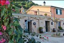 Agriturismo Santa Margherita / Il Santa Margherita è situato di fronte al mare, con una incantevole vista sulle Isole Eolie. Le terrazze, i sentieri e il verde che lo circonda ti offre la possibilità di trascorrere un soggiorno tranquillo e rilassante, in un'oasi di privacy e serenità.