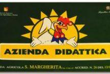 Eventi e Promozioni / Tutti gli eventi e le promozioni dell'Agriturismo Santa Margherita