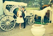 Our Vegas Wedding! / We eloped! Just the two of us!