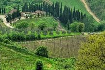 Green Italian nature / #Discover all the #nature #destinations in #Italy and #plan your #trips with Gadders