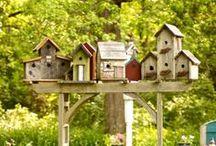 casas de passarinhos