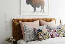 Master Bedroom / by Stephanie Stansfield