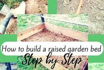 Mom of the Year Garden / For me this is more my husband's gig, but we can all use some help with our green thumb. Grow some vegetables and flowers with help from these pins and end up with a beautiful garden! / by The Mom of the Year