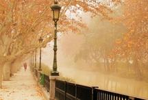My Autumn / My perfect autumn looks like this ....