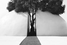 architectural details / by Diana  Watson Visual Artist