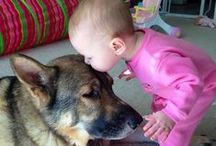 Too cute to boot / Adorable kids and baby animals