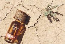 Wilderness Perfume