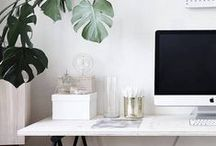 INTERIORS / Minimalist and modern, lots of plants and pretty touches.