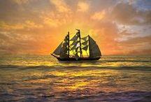 Sailing / by T C Kim Dersin