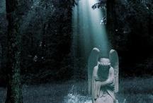 Grief - RIP Erik / by Jackie Winn