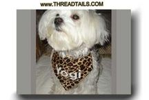 Pet Bandanas by Threadtails / This is a group of assorted bandanas I have created.   They come in various designs in small, medium, and large sizes that slide right over the collar.  One size tie on bandana scarfs are also available.  Dress your dog, puppy, or cat in a cute Threadtails bandanna!
