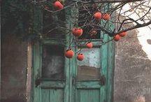 gardendoor