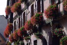 L'Alsace avec Régionelles.com / Artisans & Produits alsaciens