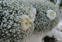 Wedding Decoration - Flowers