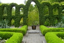 "The Topiary & Knot Garden / ""Gardeners, I think, dream bigger dreams than Emperor's""-Mary Cantwell  / by Michelle Grindel Medsker"