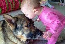 Animals & Kids レ O √ 乇 ♥ / The best Images of Animals and babies & kids