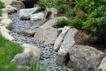 garden inspiration / ogrodowe inspiracje