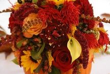 Fall Decor / by Denise