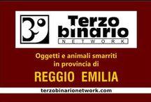 REGGIO EMILIA / Oggetti e animali smarriti in provincia di Reggio Emilia