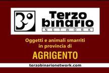 AGRIGENTO / Oggetti e animali smarriti in provincia di Agrigento
