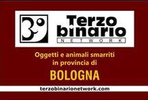 BOLOGNA / Oggetti e animali smarriti in provincia di Bologna