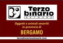 BERGAMO / Oggetti e animali smarriti in provincia di Bergamo