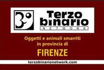 FIRENZE / Oggetti e animali smarriti in provincia di Firenze