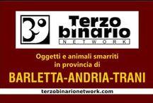 BARLETTA-ANDRIA-TRANI / Oggetti e animali smarriti in provincia di Barletta-Andria-Trani