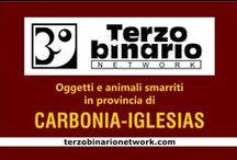 CARBONIA-IGLESIAS / Oggetti e animali smarriti in provincia di Carbonia-Iglesias