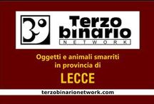 LECCE / Oggetti e animali smarriti in provincia di Lecce