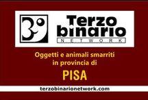 PISA / Oggetti e animali smarriti in provincia di Pisa