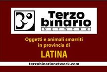 LATINA / Oggetti e animali smarriti in provincia di Latina
