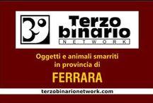 FERRARA / Oggetti e animali smarriti in provincia di Ferrara