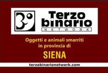 SIENA / Oggetti e animali smarriti in provincia di Siena